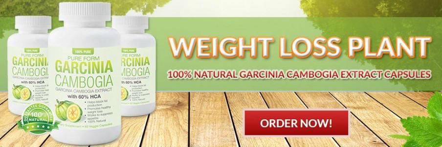 Precision Vitality Garcinia Cambogia buy