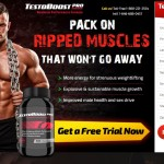 TestoBoost Pro – Destroys Fatigue and Laziness Read Must.