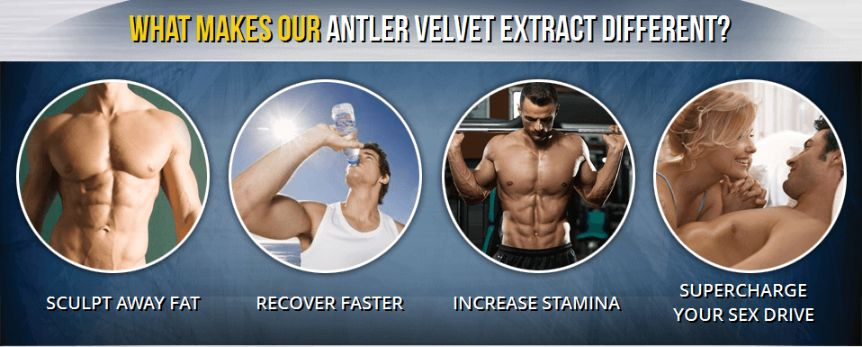 Max Antler Pro – BEFORE TRY READ MUST SHOCKING!!